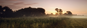 Sussex Hypnotherapy - info@hypnotherapy-sussex.com